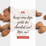 J'ai testé – Le chocolat sans torréfaction qui utilise la fève de cacao à l'état cru.